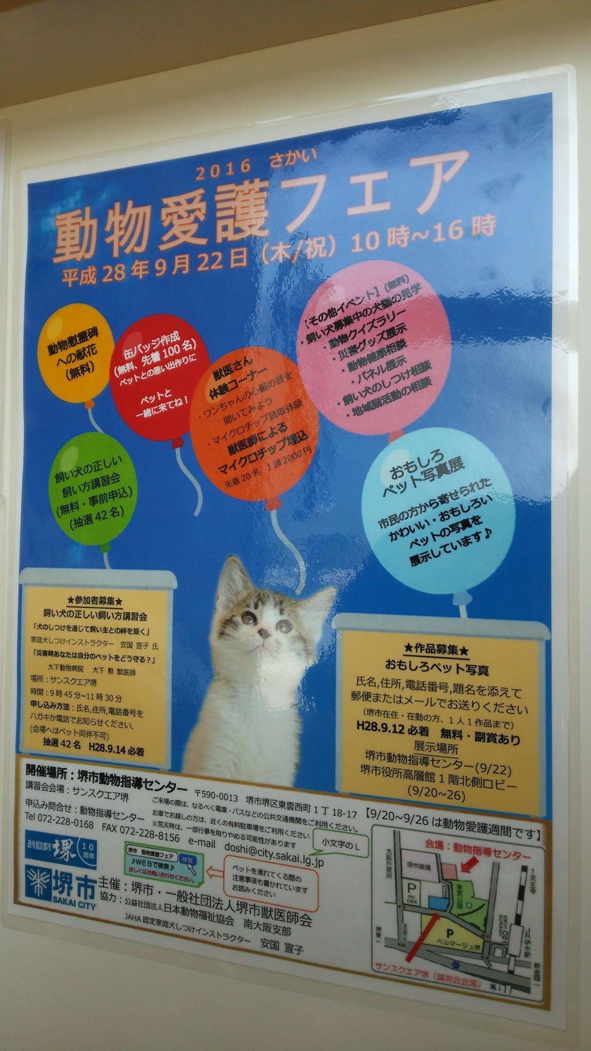 動物愛護フェア